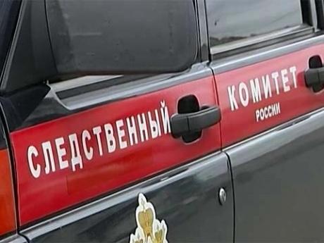 ВКрасноярском крае шестилетняя девочка погибла, играя водворе