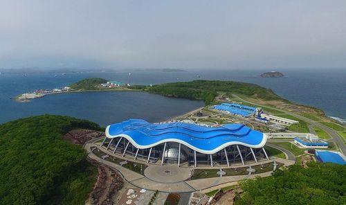 Приморский океанариум открылся для гостей