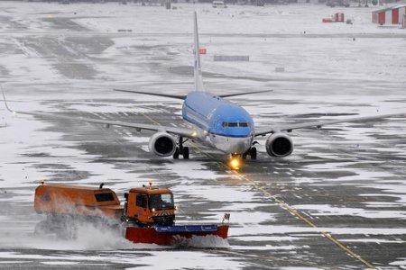 Сотрудника аэропорта осудят вНовосибирске за трагедию