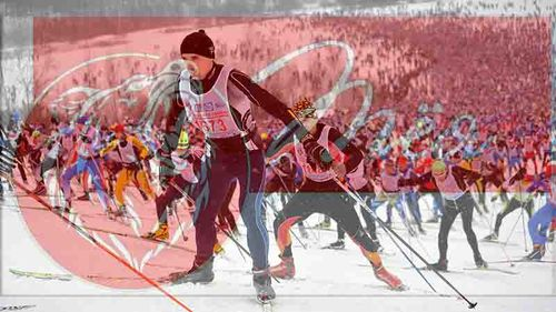 ВСаранск на«Лыжню Российской Федерации  - 2017» приедут 5 тыс.  человек