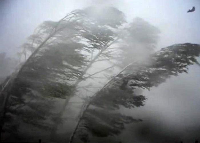 Грозы ипорывистый ветер ожидаются вСвердловской области