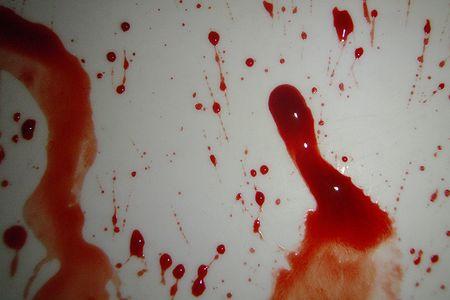 Пьяный судимый южанин-насильник Аминов застрелил тестя, тёщу и подругу жены в Лужском районе Ленобласти